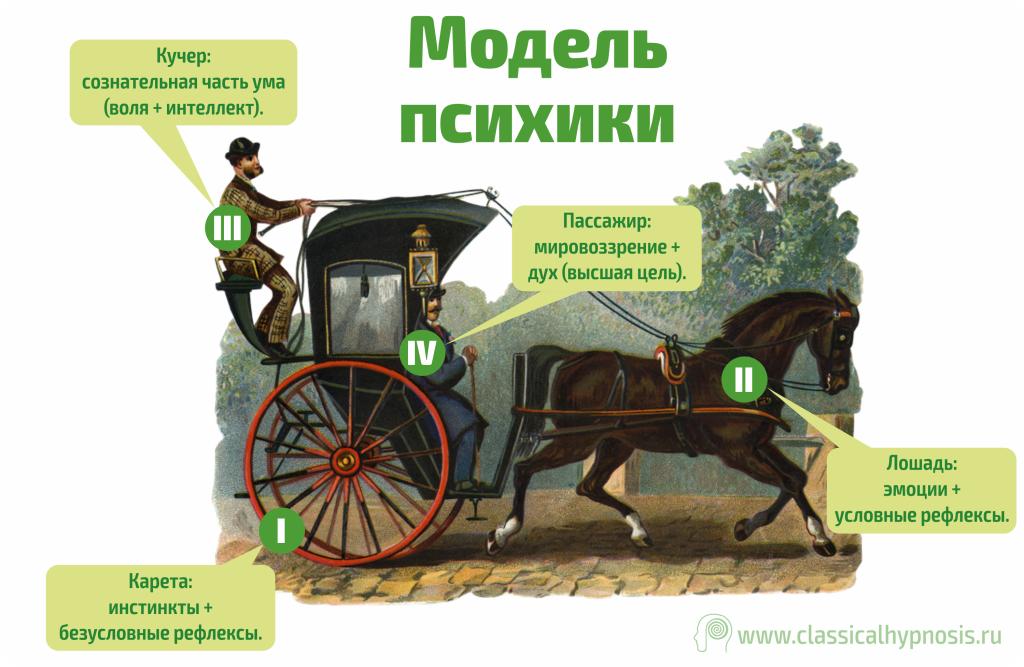 Устройство психики. Телега, лошади, кучер, пассажир.